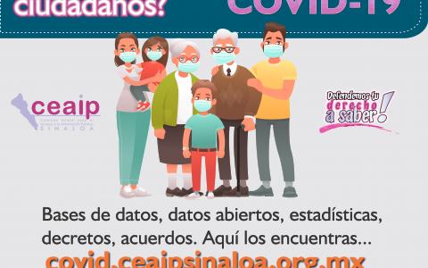 banner micrositio ciudadania